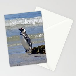Magellanic Penguin by the Sea Stationery Cards