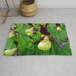 Rhode Island Wild Orchid Black and Yellow Lady Slippers Rug