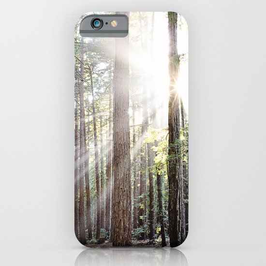 Sunburst Through the Redwoods iPhone & iPod Case