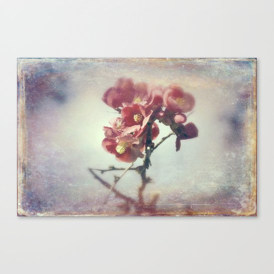 I dreamed a flower garden Canvas Print