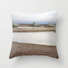 Mud Castles Throw Pillow