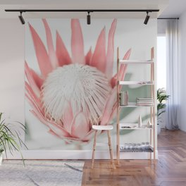 King Protea III Wall Mural