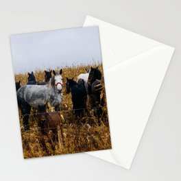 A group of horses Stationery Cards