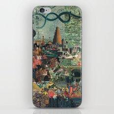 Seed Stone iPhone & iPod Skin