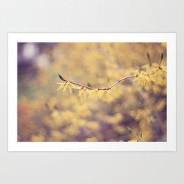 Pale Yellow Spring Art Print