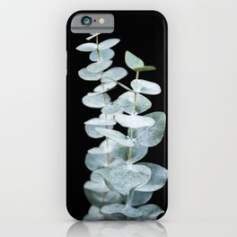 Eucalyptus Leaves on a Black Sky iPhone Case