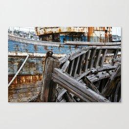 Ship Wreck Canvas Print