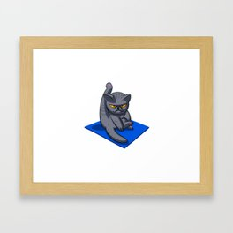 Yoga cat - Angry cat - grey cat - fat cat Framed Art Print