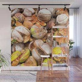 Coconut Husk Photography. Coir. Coconut Fibre. Coir Fibres Wall Mural