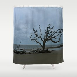 A Ghost Tree On Jekyll Island Beach Shower Curtain