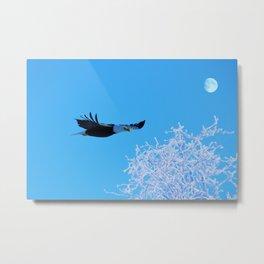 Frosty Flight Metal Print