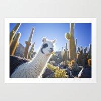 lama Art Prints featuring Lama by Benedikt Saxler