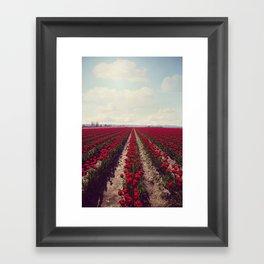 JW Photography Framed Art Print