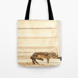 The sun shines on all cats equally Tote Bag