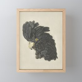 Black Cockatoo Head Portrait Framed Mini Art Print