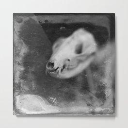 Skeletal Metal Print