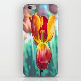 Festival canadien des tulipes iPhone Skin