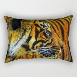 Looker Rectangular Pillow