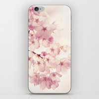cherry blossoms iPhone & iPod Skins featuring cherry blossoms by Sylvia Cook Photography