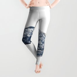 Mexico Grey whale Leggings