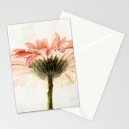 Gerbera Turnaround Stationery Cards