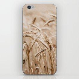 Wheat Harvest iPhone Skin