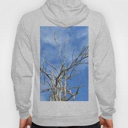 tree on the blue sky Hoody