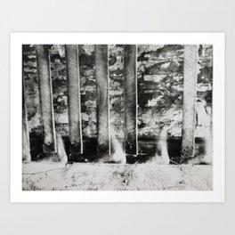 Continuities  Art Print