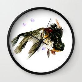 Black Moor, fish art, design cute black fish Wall Clock