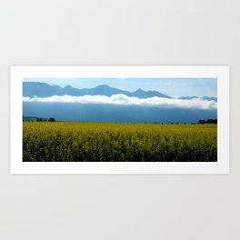 Mustard in Bloom Art Print