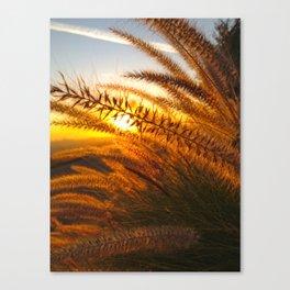Happy Glow Canvas Print