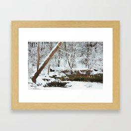 winter seens #1 Framed Art Print