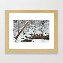 winter seens #1 Framed Art Print