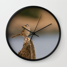 Checking things out! Wall Clock