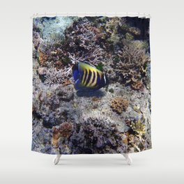 Fish on the Reef Shower Curtain
