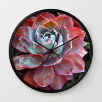 succulent Wall Clocks featuring Succulent by Claire Laminen Photo