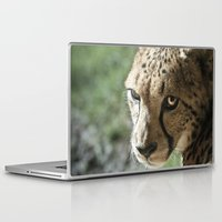 cheetah Laptop & iPad Skins featuring Cheetah by Cameron Booth