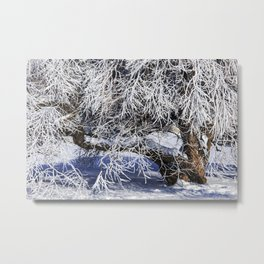 Niagara Falls Tree covered in Winter Snow and the Ice formed by the Freezing Mist Metal Print