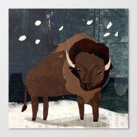 buffalo Canvas Prints featuring Buffalo by Christiane Engel