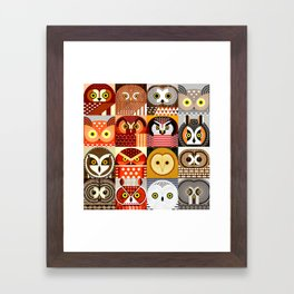 North American Owls Framed Art Print