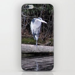 Hangin' Around iPhone Skin