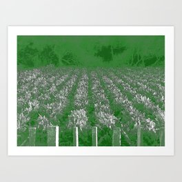 garden of swiss chard Art Print