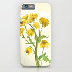 Chrysanthemum 2 iPhone 6s Slim Case