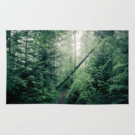 Fallen Tree in Misty Forest Rug