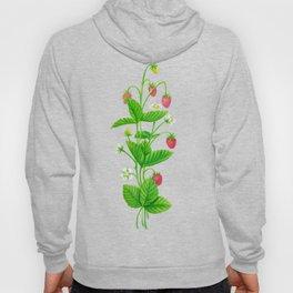 Strawberry garden Hoody