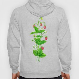Strawberry garden Hoody