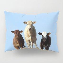 Cow Hill Pillow Sham