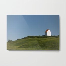 withe house Metal Print