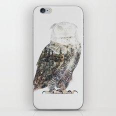 Arctic Owl iPhone & iPod Skin