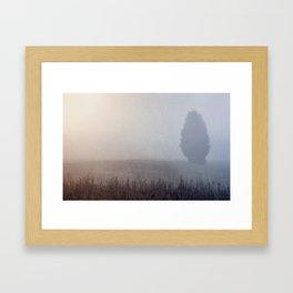 Lone Cedar Framed Art Print